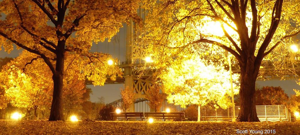 Lights_in_Astoria_Park