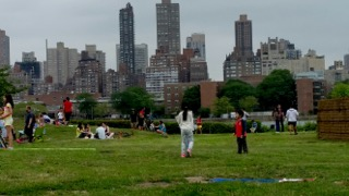 """Wildfest"" at Socrates Sculpture Park"