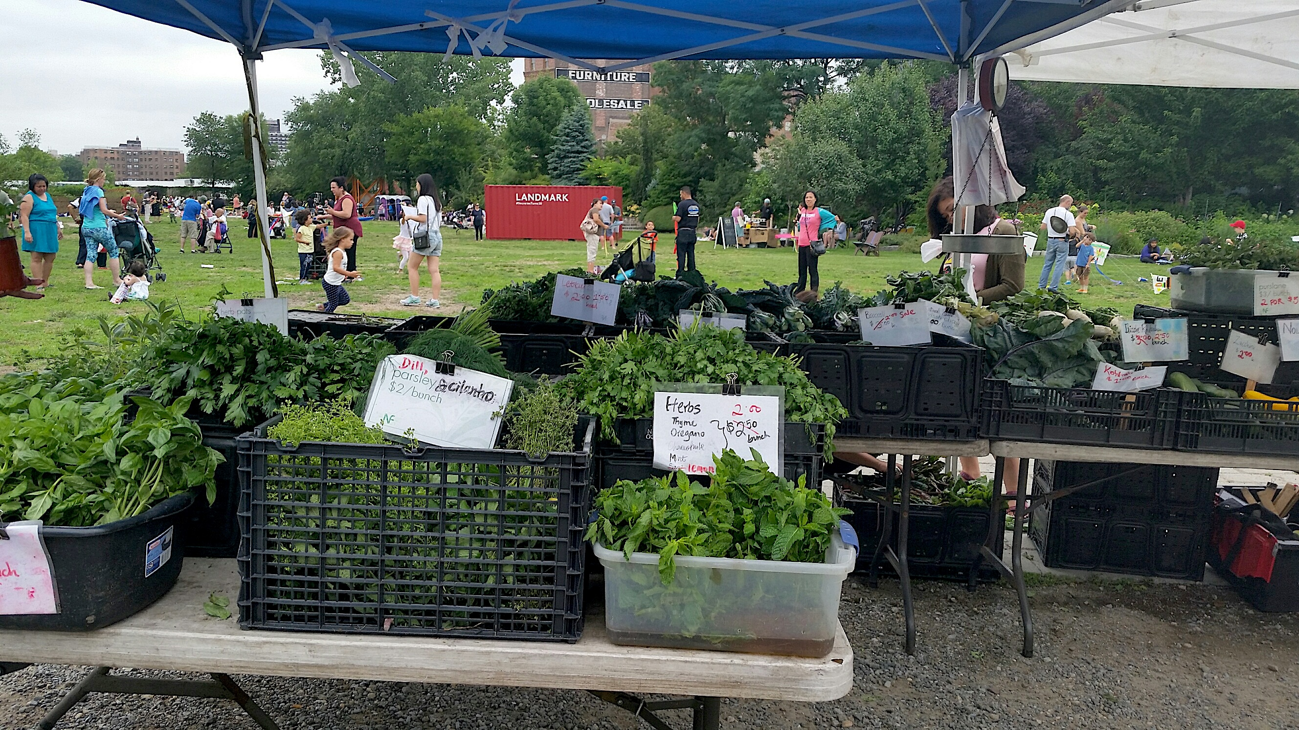 Astoria Greenmarket Will Not Return This Summer