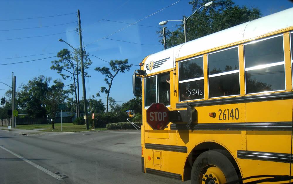 School Bus Arm