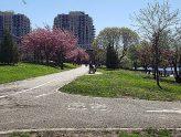 Rainey Park
